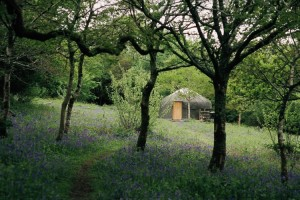 camping a yurt