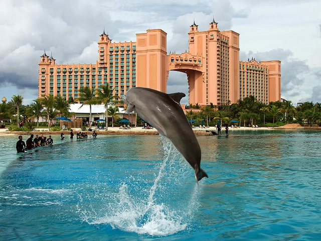 Experience Islands Magic In The Bahamas Website For Women